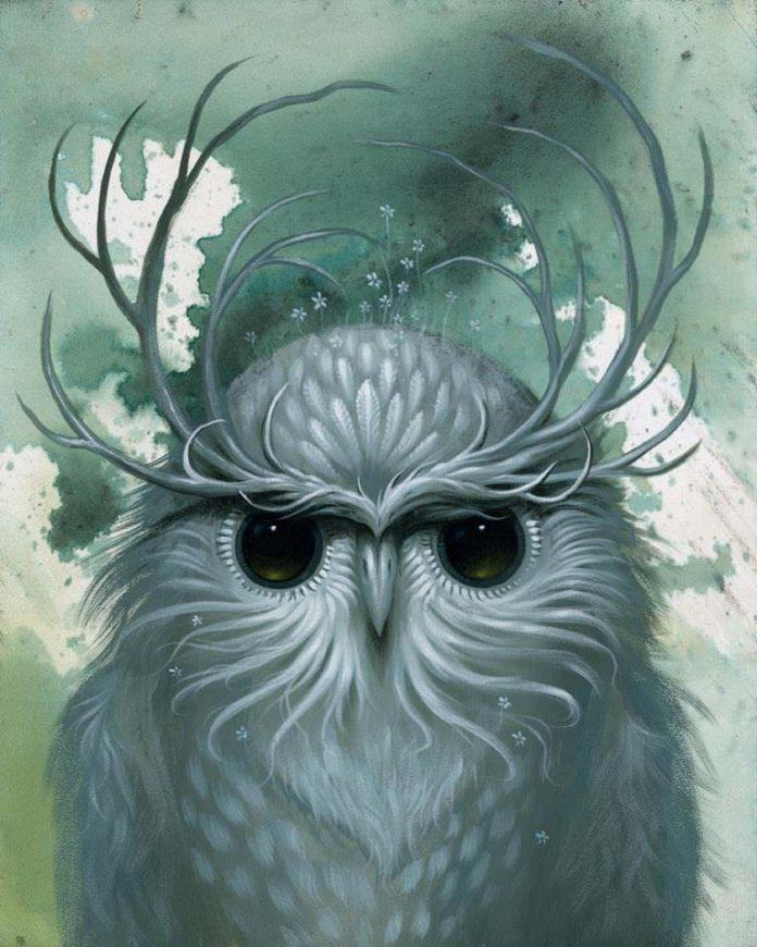 fantasy owl art antlers design blue painting animal bird
