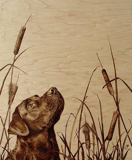 A black Labrador dog poses in this photorealistic wood burning art work by Julie Bender