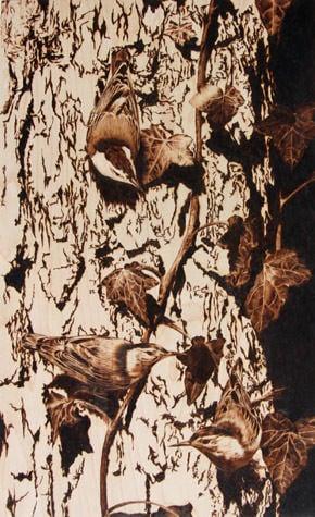A Hyper Realistic Wood Burning Art Work Of Birds On Tree By Julie Bender