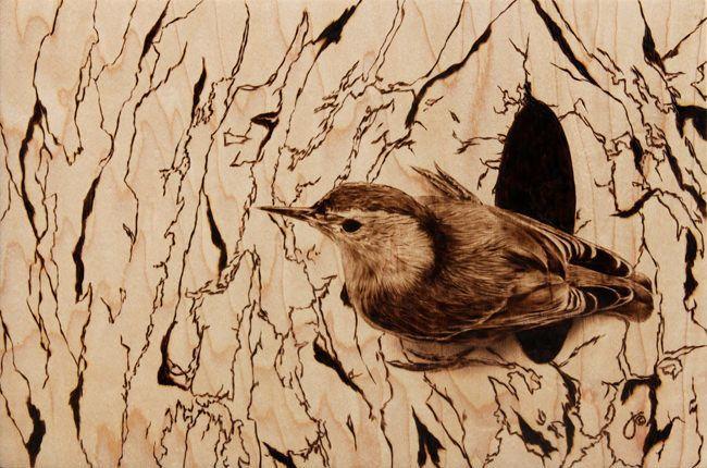Photorealistic Wood Burning Art Of A Bird By Julie Bender « « Mayhem U0026 Muse