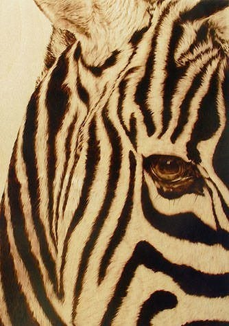Julie Bender creates an incredible photorealistic portrait of a zebra with wood burning