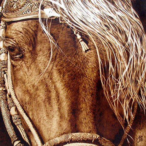 A beautiful photorealistic animal portrait of a horse, burned into wood by Julie Bender