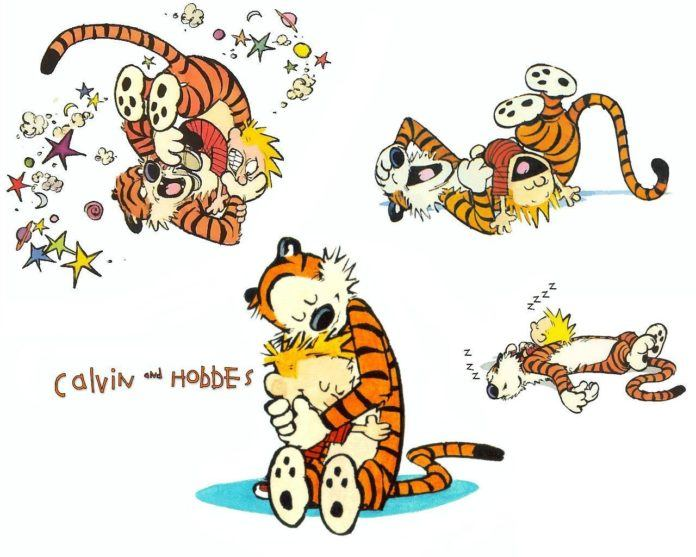 A Calvin and Hobbes picture that shows the two friends fighting, laughing, sleeping and hugging