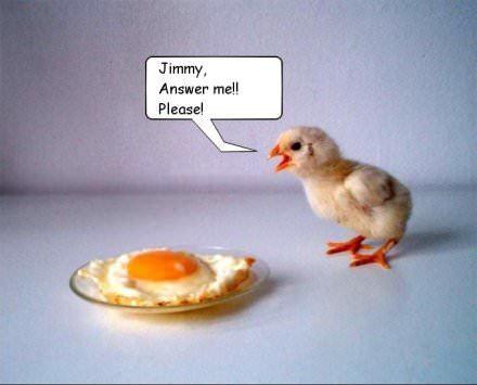 chicken vs egg breakfast funny easter humor picture image