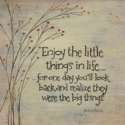 A cute picture quote about appreciating the little things in life