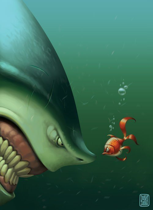 zilber funny photoshop goldfish vs shark humor cute illustration