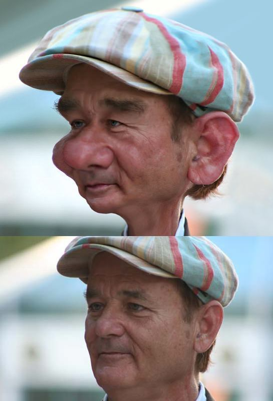 bill murray pike photoshop caricature portrait funny digital image manipulation face morph before and after