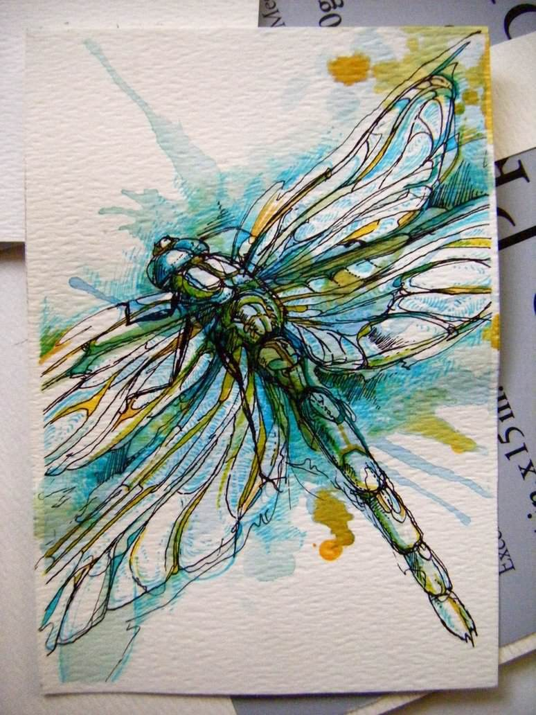 blue dragonfly patterns nature wings animal insect ...