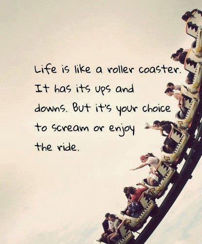 life advice quote rollercoaster attitude inspiration motivation art photo picture