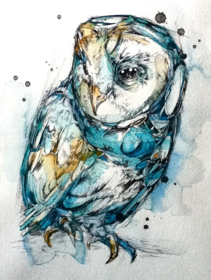 Owl Animal Illustration Design Sketch Painting Drawing