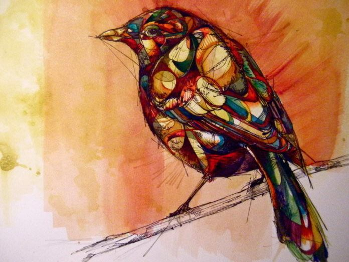 rook bird on a branch feathers nature animal abstract art drawing painting illustration color pattern