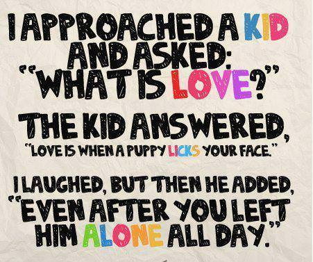 kids opinion on love cute quote picture image text inspiration motivation puppy