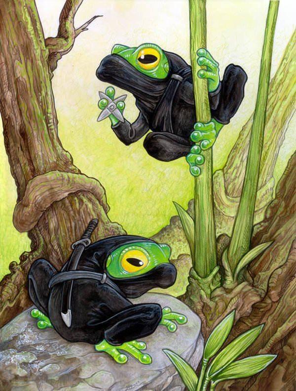 ninja tree frogs toads funny humor illustration art cute animal