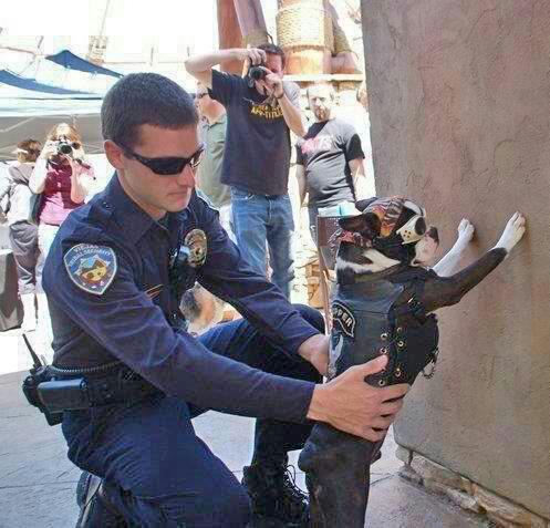 cop pats down biker dog funny picture photo that's life humor street gang