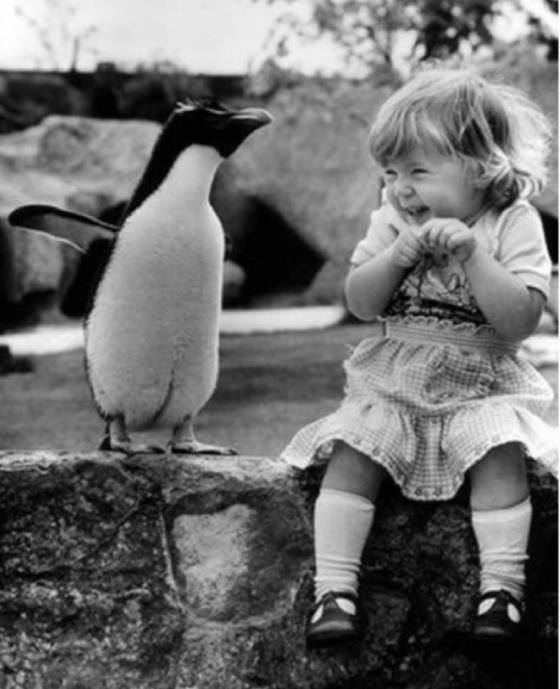 A cute picture of a little girl sitting next to a penguin and giggling