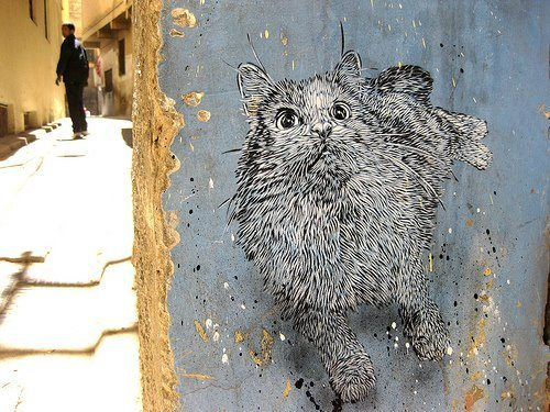 A graffiti art work by French urban street artist C215 of a cat in black and white