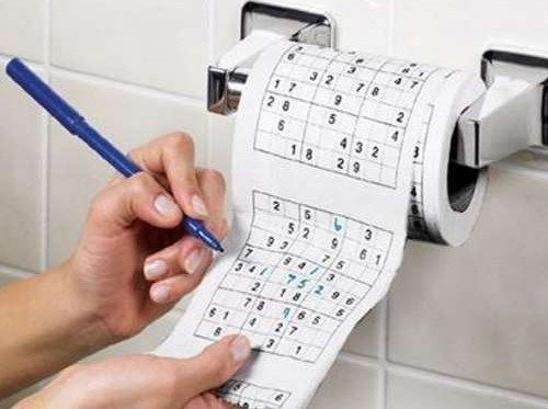 Funny Sudoku toilet paper that means you can play puzzle games while on the loo