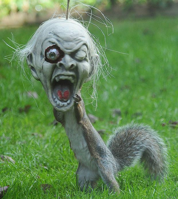 A funny halloween picture of a squirrel wearing a horror mask