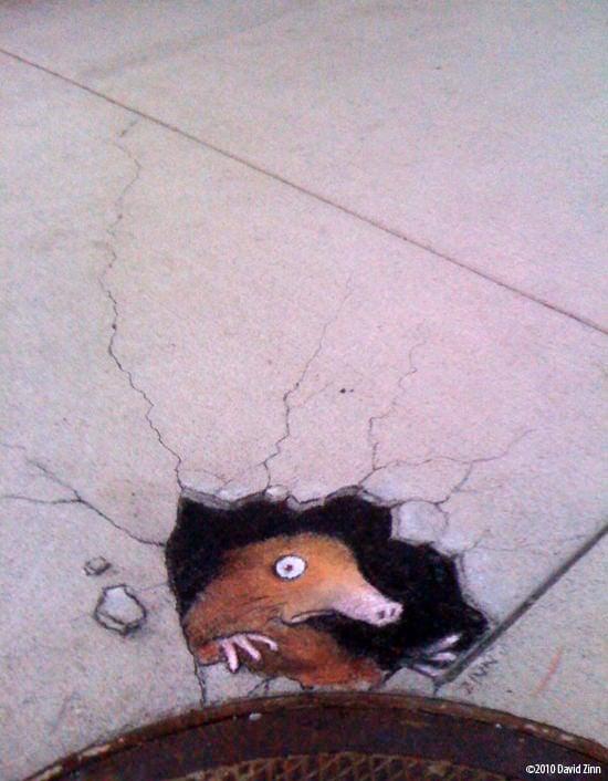 A graffiti chalk drawing by David Zinn of a mole digging up through the pavement