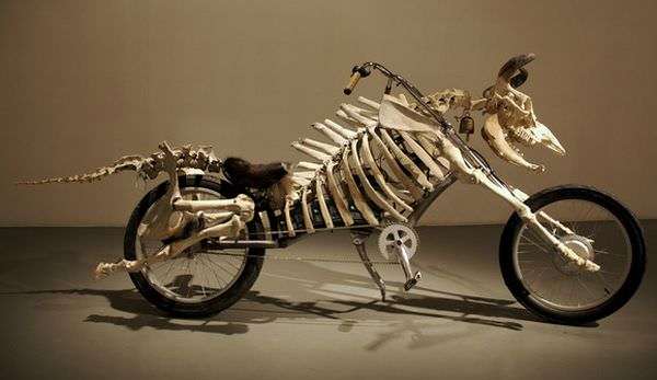 A mad cow motorbike made from the mechanics of a bike and the skeleton of a cow