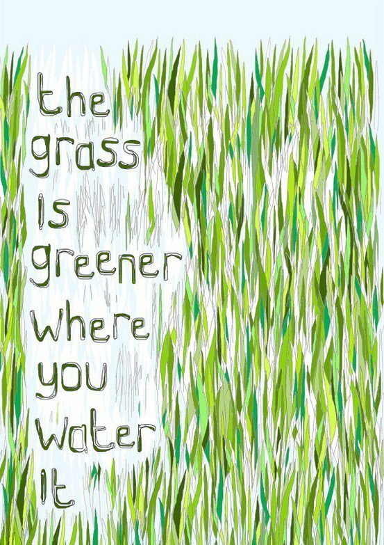 An inspirational picture quote that read the grass is greener where you water it