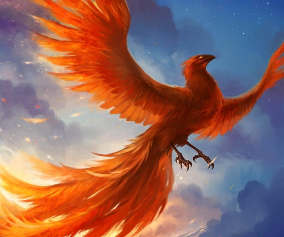 Painting Art Phoenix Fire Fantasy Digital Drawing: Beautiful Phoenix Designed In Photoshop By Digital Fantasy