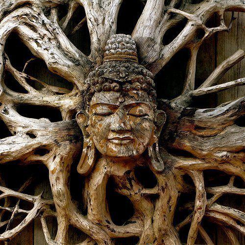 An inspirational picture of the buddha carved into the roots of a tree