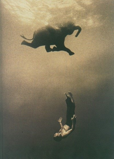 Cool picture of a man swimming with an elephant