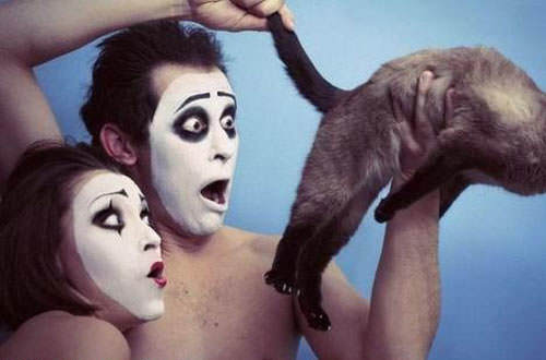 Funny picture of two mimes looking at a cat bum
