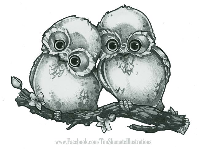 Two adorable baby owls cuddle on a branch in this cartoon illustration by Tim Shumate
