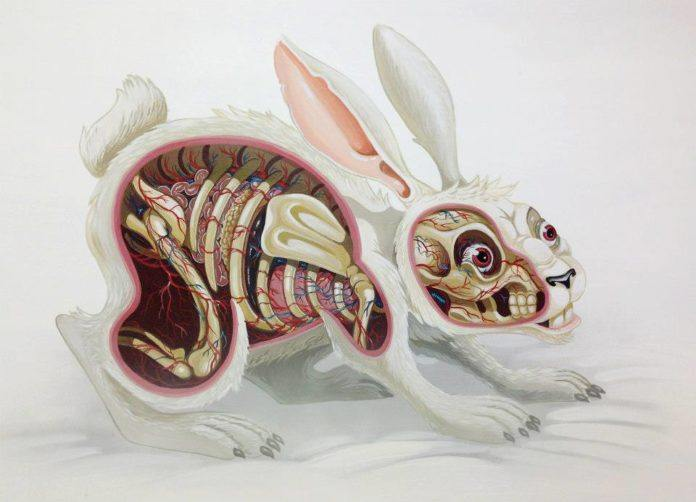 Austrian artist Nychos dissects a white rabbit with his macabre cartoon style