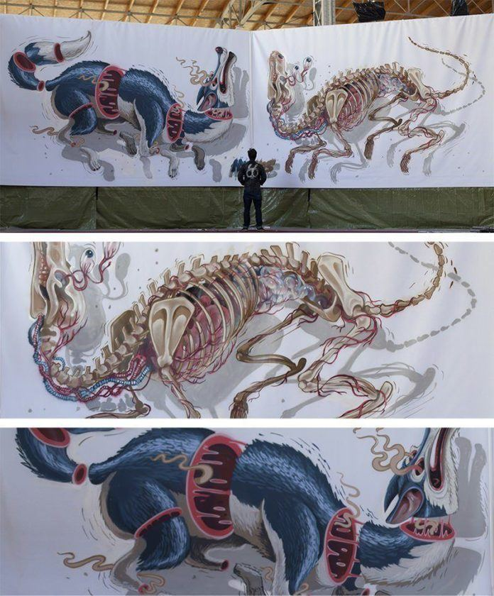 Graffiti artist and illustrator Nychos stands before a large mural of a wolf that has been cross sectioned and had his skeleton removed