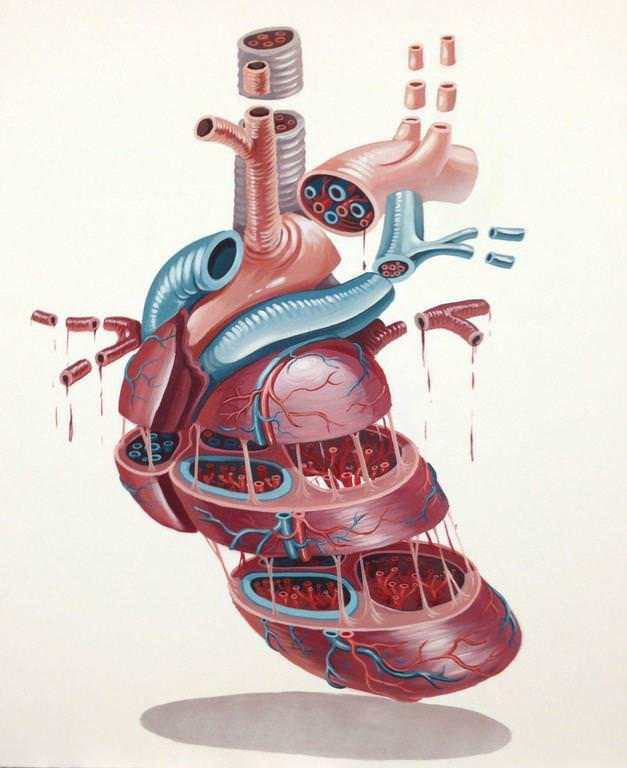 The anatomy of a human heart is displayed in this cross section illustration by graffiti artist Nychos