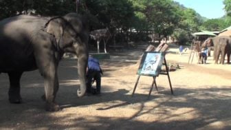 Amazing Elephant Paints a Self Portrait
