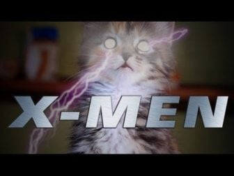 X-Men Kitties!
