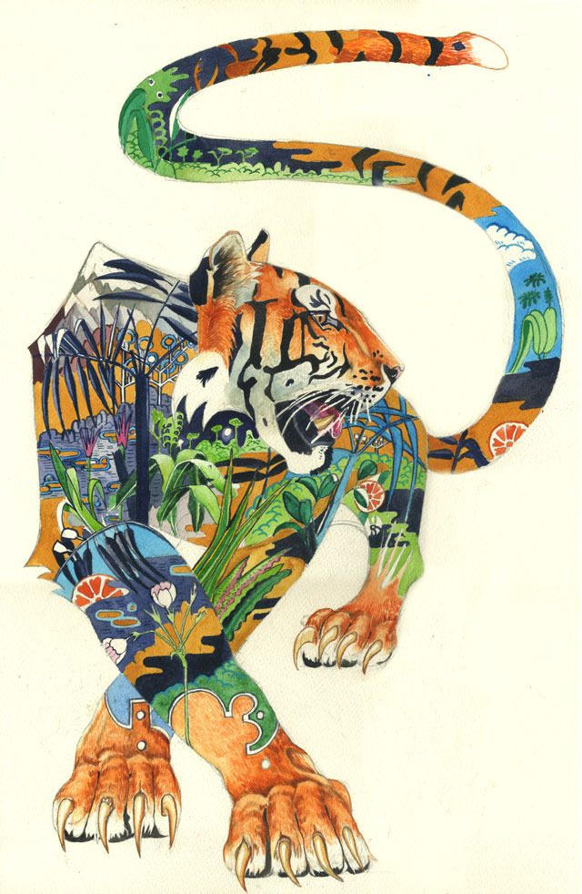 A pacing tiger dreams of its homeland in this fierce watercolour painting by Daniel Mackie.