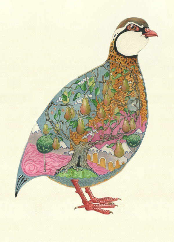 The pear tree is inside the partridge in this Christmas card illustration by Daniel Mackie.