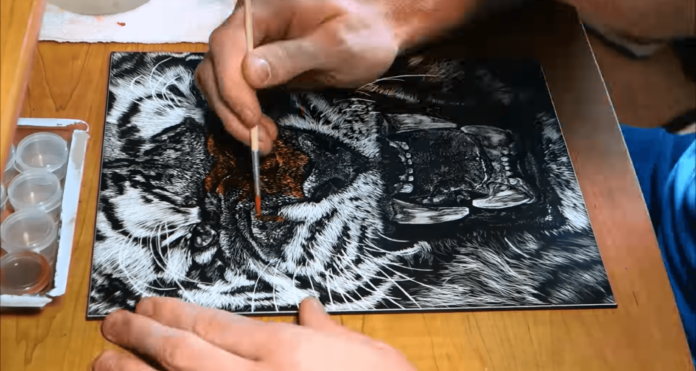 Using different tools on the ink and clay surface of the scratchboard creates different textures and effects that give this tiger illustration a real visual appeal.